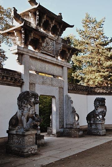 japanischer garten privat – siddhimind, Garten und erstellen